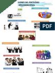 Funciones Del Psicologo Organizacional