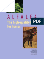 Alfalfa for Horses Revised