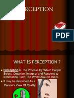 perception for ob