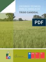 Criterios Tecnicos Trigo Candeal