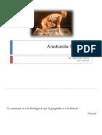 anatomahumana-130609231209-phpapp01