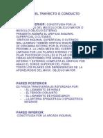 FOSITAS_INGUINALES