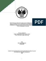 alkaloid-nikotin-mantap-bener-2.doc