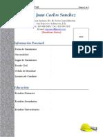 Modelo de Curriculum Para Ingenieros Civiles
