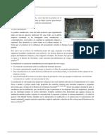 Meditación.pdf 6
