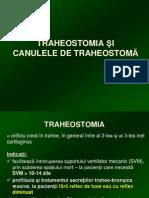 Traheostomi