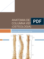 1 Anatomia de Columna Vertebral (Osteologia)