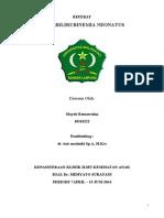 181901449 FINAL Referat Hiperbilirubinemia Doc