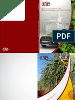 Rima - FIAT.pdf