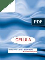 Tema 2 Membrana Celular