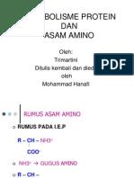 Metabolisme Protein Dan Asam Amino 2012