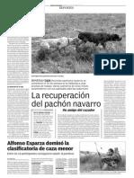 pachon.pdf