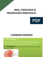 Anatomia Fiziologia Si Imunologia Sistemului Urinar