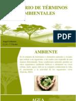 Glosario términos ambientales