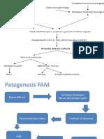 Slide Presentasi Patofisioogi CA Mmae