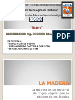 Exposicion de Maderas