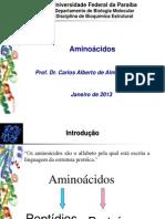 Aula_Amino+ícidos