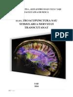 Electroacupunctura Sau Stimularea Nervului Transcutanat - Isa