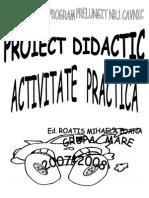 proiectdidactc.activitpractica