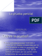84226796 La Prueba Pericial