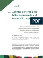 Anexo 6 Apuntes en Torno a Las Fallas de Mercado y El Monopolio Natural - Copia