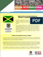 Boletín Interno No. 33