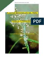 Plantas Medicinales Del Peru Familia Cyperacea
