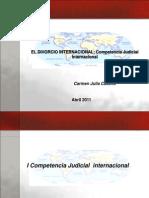 Wiener Competencia Judicial Internacional