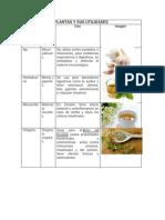 PLANTAS Y SUS UTILIDADES.docx