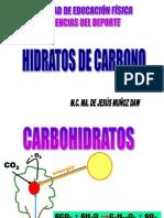 HIDRATOS DE CARBONO FUNCIONES.ppt