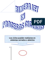 Ter115 Proc Ciclicos