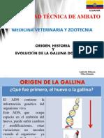 Origen, Evolucion e Historia de La Gallina Domestica
