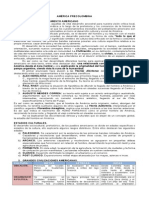 guia1 AMÉRICA PRECOLOMBINA.doc