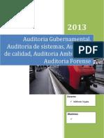 14 Auditoria - Grupo