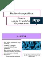 7. PDF Bacilos Gram Positivo No Esporulados Aerobios