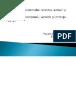 Poluarea Ecosistemului Terestru-Aerian Și Protecția Lui