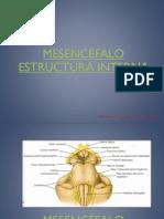 Mesencéfalo.pdf