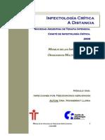 2009 Infecciones Por P Aeruginosa en UTI Revision