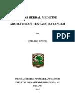 Tugas Herbal Medicine Batangeh