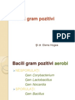 Curs - bacili gram(+)