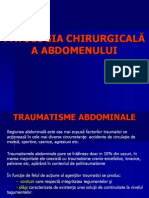abdomen 1