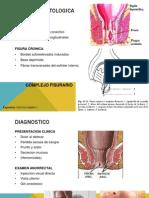 Anatomia Patologica Fisuras