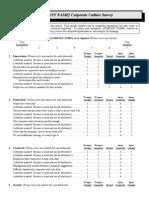 Corporate Culture Survey