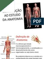 1º Aula Anatomia e Fisiologia