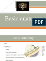 Basic Neuroanatomy ppt slides