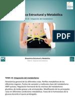 Tema 19. Integracion Del Metabolismo