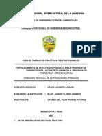 Plan de Trabajo-carmen Del Pilar