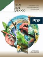 Capital Natural de Mexico_Sintesis
