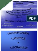 40017003-Prezentare-Atestat.pdf