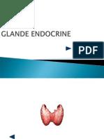 glandeendocrine_tiroida (1)